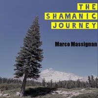 The Shamanic Journey